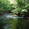 Beaver_Brook Feeder4 5-31-11