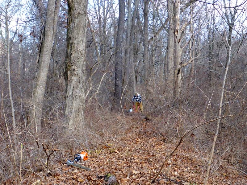 Bob Barth clearing the towpath (12/15/15).