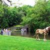 Union Canal Park06
