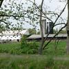 Union Canal Park19
