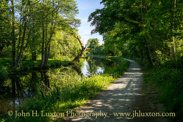 Llangollen Canal - Gledrid - May 20, 2020
