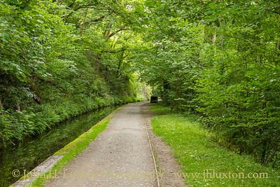 Llangollen Canal - Wern-Isaf Rock Cutting - July 02, 2020