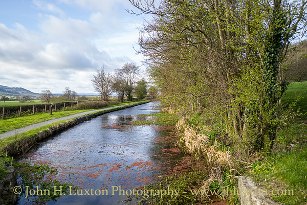 Montgomery Canal: Pool Quay to Gallowstree Bridge 117 - April 08, 2021