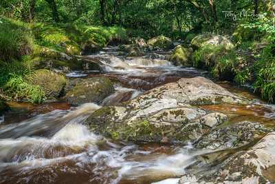 Lake District Stream