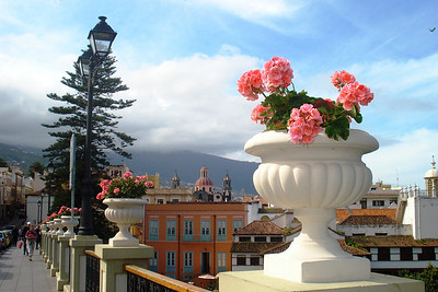 La Orotavia, Tenerife, Canary Is. Spain