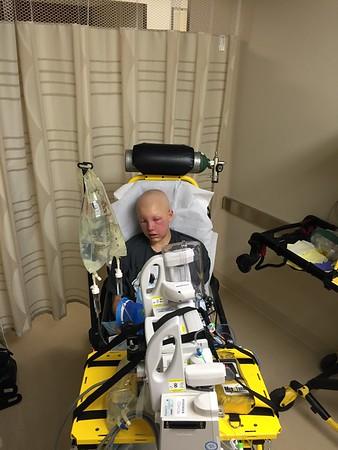 Kasey's Treatment Nov. 2014 to Sept 2015