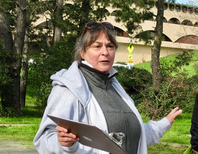 Christine Cragg