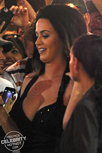 Katy Perry In Revealing Little Black Dress Uses Fans Phone To Touch Up MakeUp!
