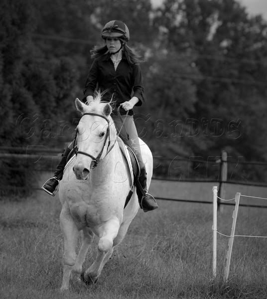 MAC-HorseShow-5-BW