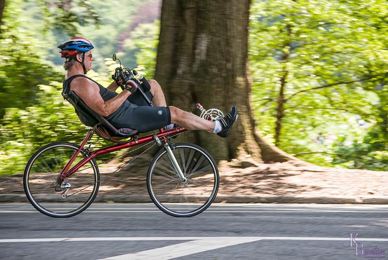 DSC_5664 recliner on wheels