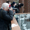 DSC_2314 capturing the snow monkeys during the blizzard