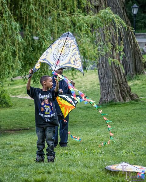 DSC_4759 go fly a kite