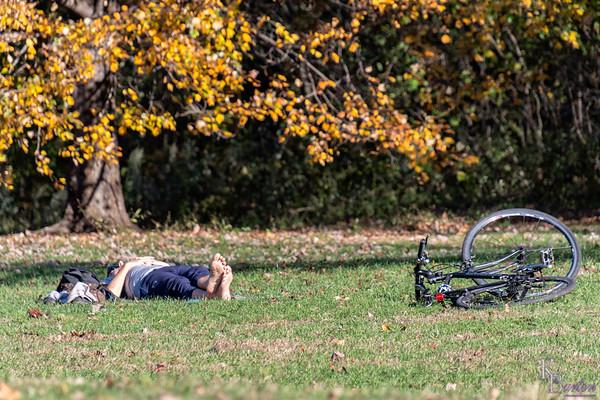 DSC_3515 afternoon siesta