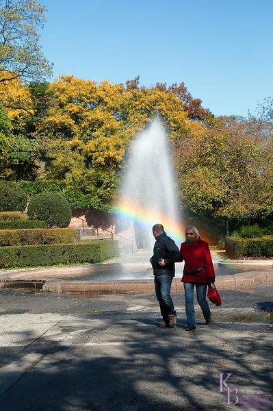dsc_9075 look honey a rainbow