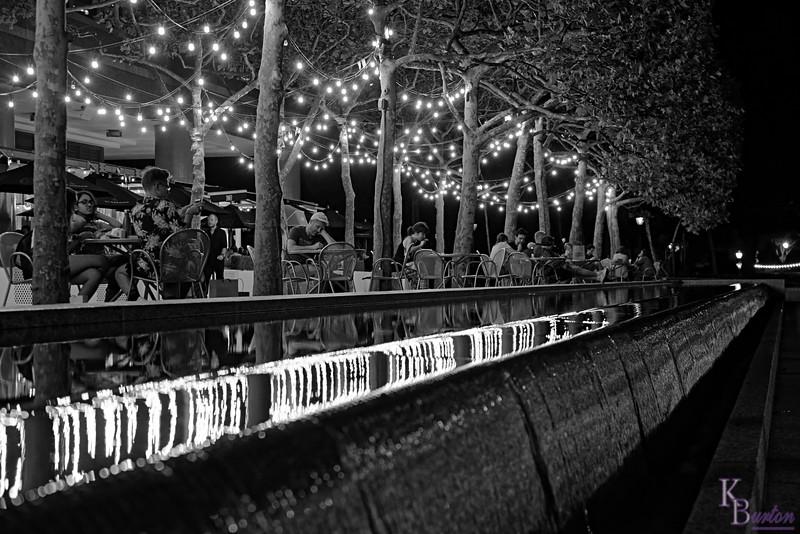 DSC_8229 scenes from Battery Park City_DxO