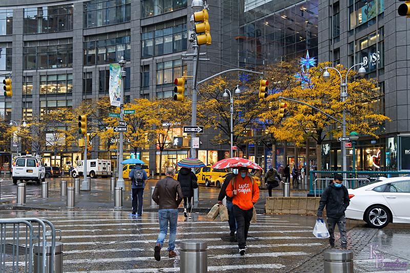 DSC_9345 autumn in NY_DxO