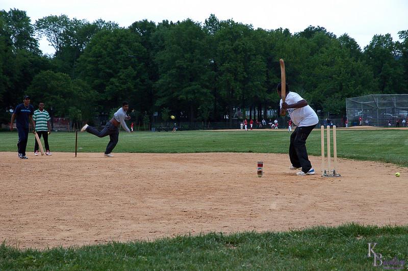 DSC_0966 cricket in the park