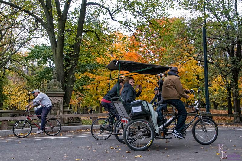 DSC_5763 cycling through the park