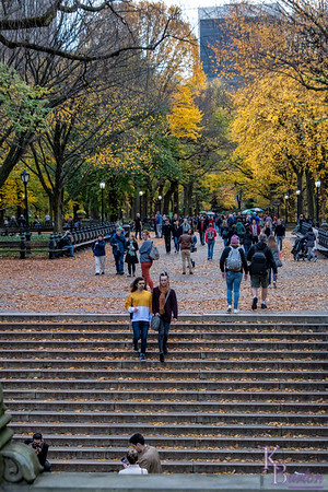 DSC_3345 the Mall in the fall