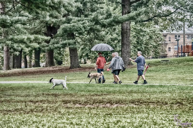DSC_9131 rainy morning at Clove Lakes