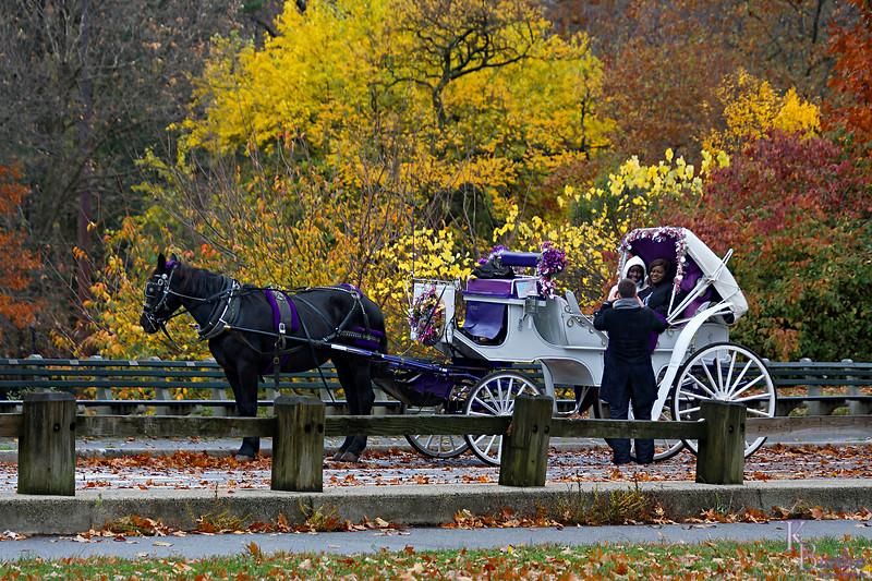 DSC_9290 fall scenes rom Central Park_DxO