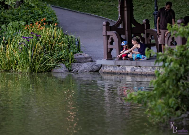 DSC_4247 summertime scenes at Central Park