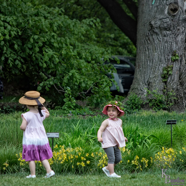 DSC_5123 spring scenes from the Brooklyn Botanical Gardens