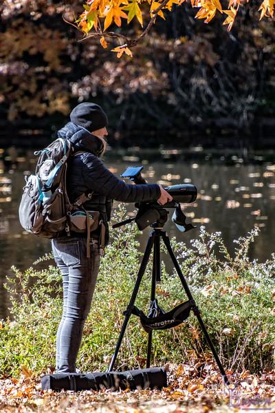 DSC_3412 bird watcher