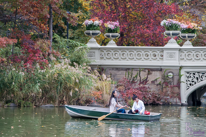 DSC_0798 autumn comes to Central Park