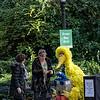 DSC_7496 Sesame street fans