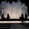 DSC_1013 silhouettes