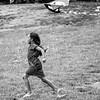 dsc_4740 let's go fly a kite