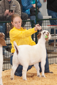 caney_valley_doe_show_20201212-22