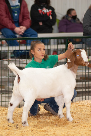 caney_valley_doe_show_20201212-42