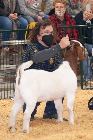 caney_valley_doe_show_20201212-23