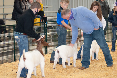 caney_valley_doe_show_20201212-3