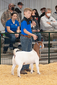 caney_valley_doe_show_20201212-13