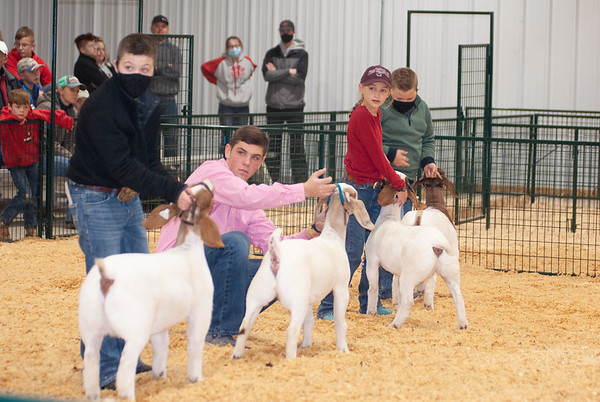 caney_valley_doe_show_20201212-32