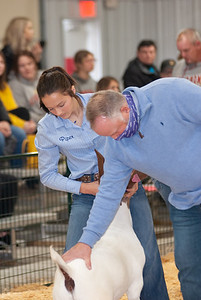 caney_valley_doe_show_20201212-33