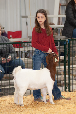 caney_valley_doe_show_20201212-10