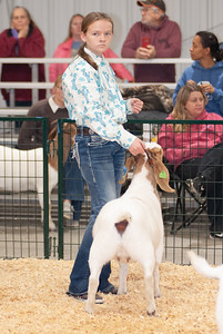 caney_valley_doe_show_20201212-38