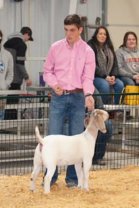 caney_valley_doe_show_20201212-14