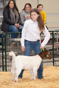 caney_valley_doe_show_20201212-4