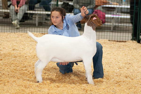 caney_valley_doe_show_20201212-35