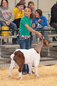 caney_valley_doe_show_20201212-15