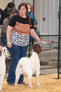 caney_valley_doe_show_20201212-21