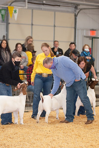 caney_valley_doe_show_20201212-17