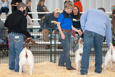 caney_valley_doe_show_20201212-1