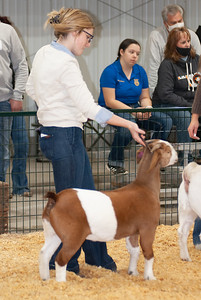 caney_valley_doe_show_20201212-19