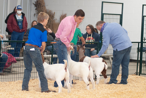 caney_valley_doe_show_20201212-12